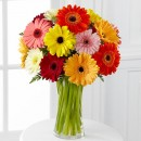 Colorful World Gerbera Bouquet