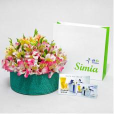پکیج هدیه گلدان بهاری - کارت هدیه