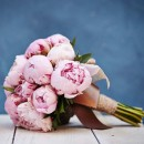 گل وگیاهان آپارتمانی