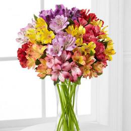 دسته گل رنگین گمان آلسترومریا